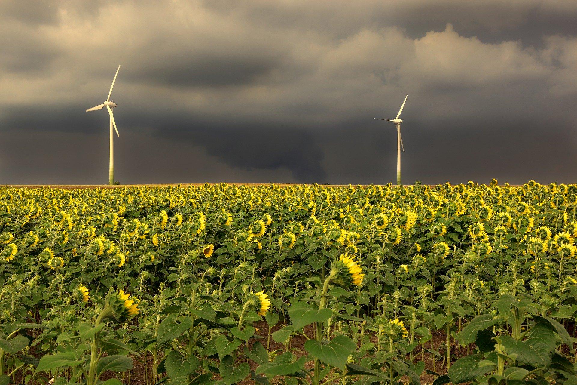 Meine Visionen für die Energiewende in Sachsen-Anhalt (Teil 1)